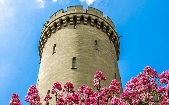 Arundel Castle and flowers