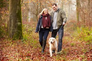 A couple walking dog in autumnal leaves