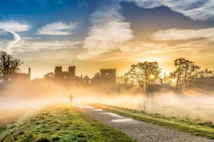 Cowdray Estate in the misty morning