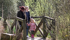Crawley and Gatwick area gardens
