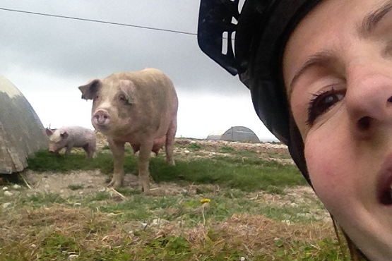 Cyclist taking a selfie with a pig