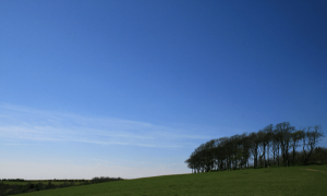 Blue skies in the countryside