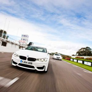 Cars racing on the track at Goodwood