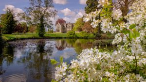 Wakehurst pond and flowers