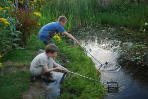 Two young boys exploring the water with nets at RSPB Pagham Harbour