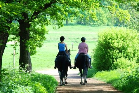 Two horse riders riding down countryside lane