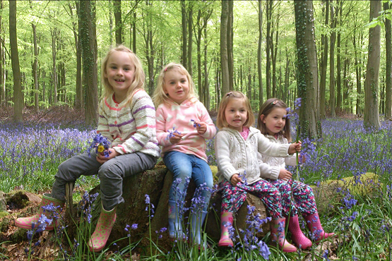 Four young girls on a woodland stroll through bluebell woods at Angmering
