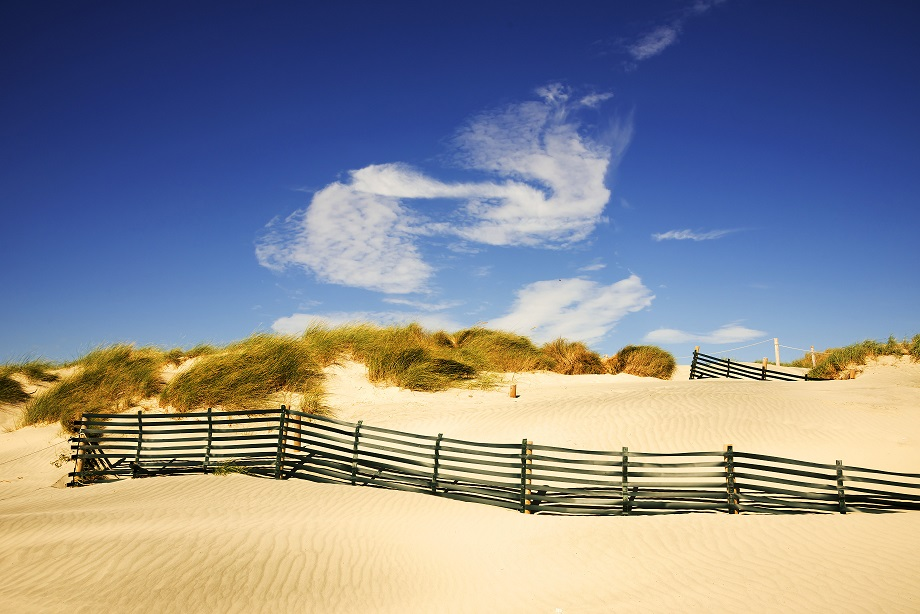The witterings sandy beach