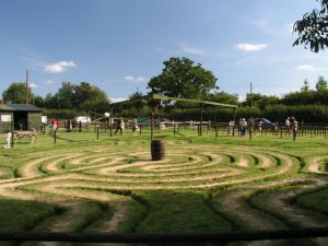 Tulleys Farm floor maze