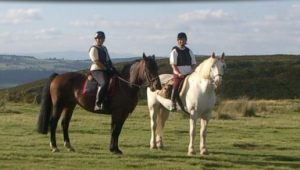 Two horse riders in the countryside