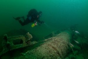 A diver exploring the water bed in Selsey West Sussex with Mulberry Divers