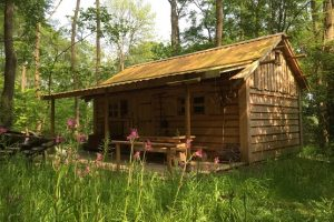 A wood cabin at Forest Garden Shovelstrode eco glamping