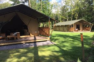 Front view of the safari lodges at Worth Forest Glamping