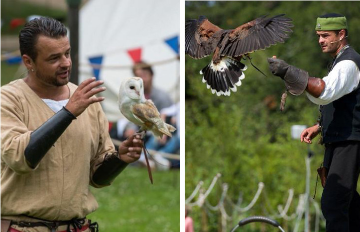 Two men showing an owl and hawk to a crowd