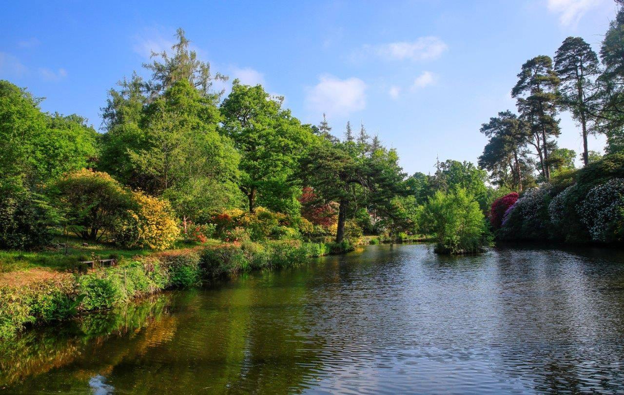 Leonardslee lake and trees
