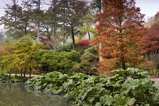 Leonardslee Lake and Gardens in autumn