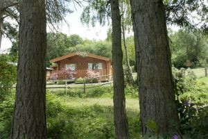 Woodland image of Cottesmore Lodges