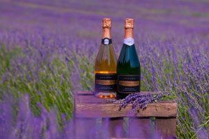 Two bottles of sparkling wine in a lavender field at Ashling Park Estate