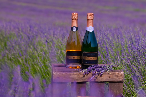 Two bottles of sparkling wine in a lavender field at Ashling Park Estate