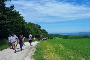 South Downs Way Annual Walk