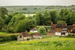 Weald and Downland buildings and surrounding gardens