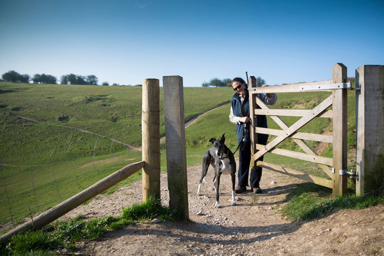 Woman and dog opening gate on a walk in the South Downs National Park