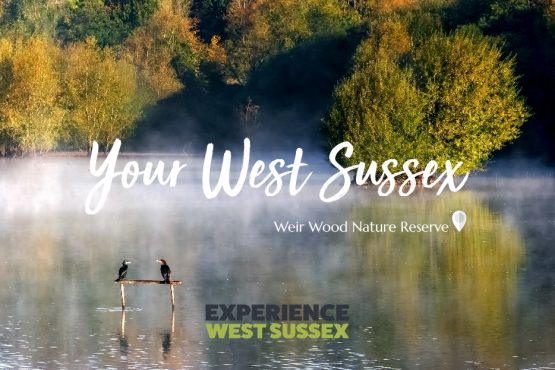Your West Sussex - Weir Wood Nature Reserve