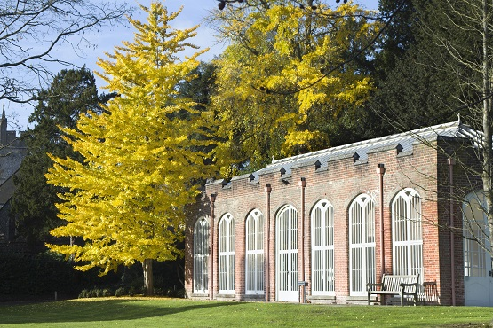 West Dean Gardens in the sunshine with yellow trees main building centred