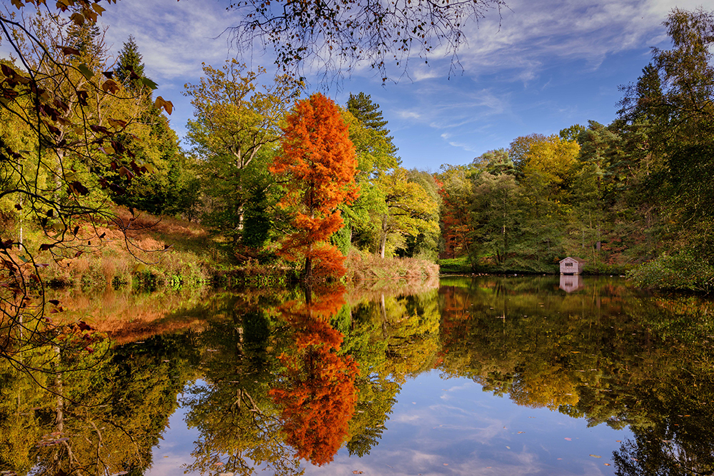 Autumnal view across the lake at Wakehurst