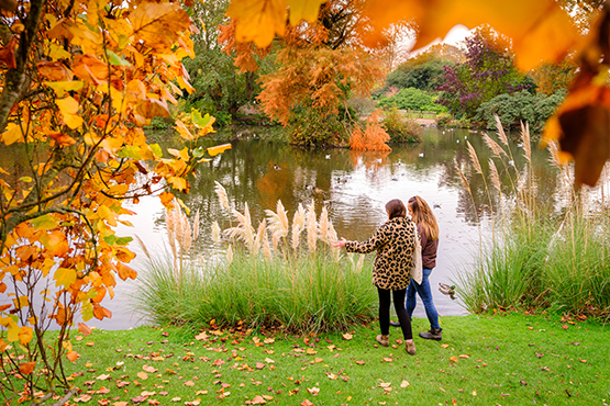 Two people standing by the lake at Wakehurst, framed by autumnal leaves