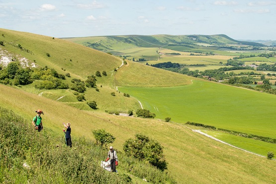 South Downs National Park countryside
