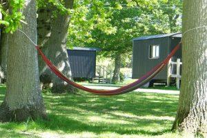 A hammock tied between two trees