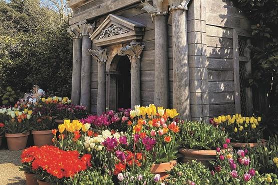 Tulips in front of Arundel Castle's gardens