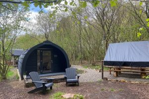 Hazelbank Farm's accommodation pod pictured in the woodland setting